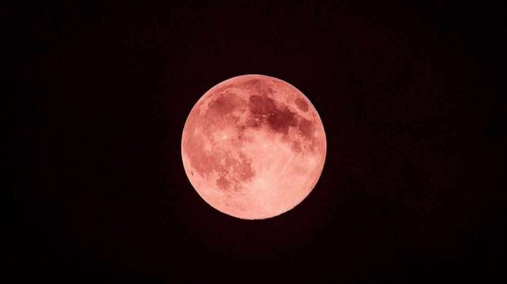 """""""Moon Strawberry"""" si svolgerà giovedì (24);  Dai un'occhiata ai suggerimenti per l'ultima superluna nel 2021 - scienza 2021"""