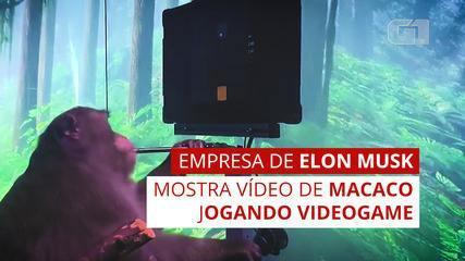 Elon Musk mostra un video di una scimmia che gioca ai videogiochi con la mente